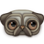 Pug Icon 64px png