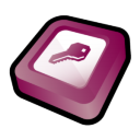 Microsoft Office Access Icon icon