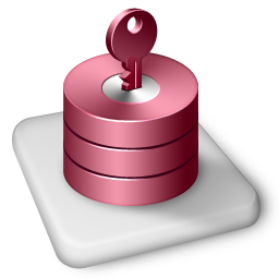 Color MS Access Icon 256px png