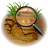 Search Icon 48px png