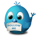 Twitter Follow Me Icon icon