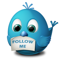 Twitter Follow Me Icon 256px png
