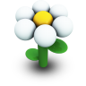 White Daisy Icon 96px png