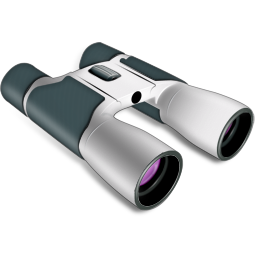 Binoculars Icon 256px png