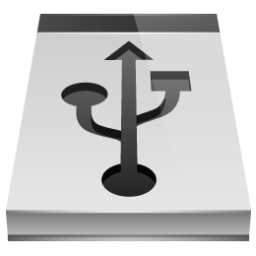 Removable Drive Icon 256px png