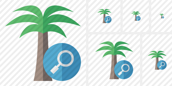 Icone Palmtree Search