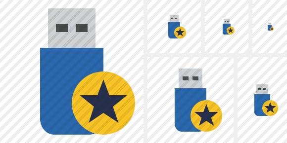 Flash Drive Star Icon