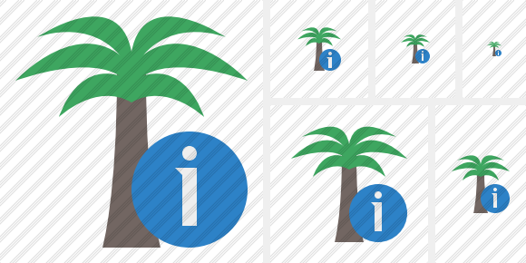 Palmtree Information Icon