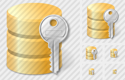 Database Key Icon