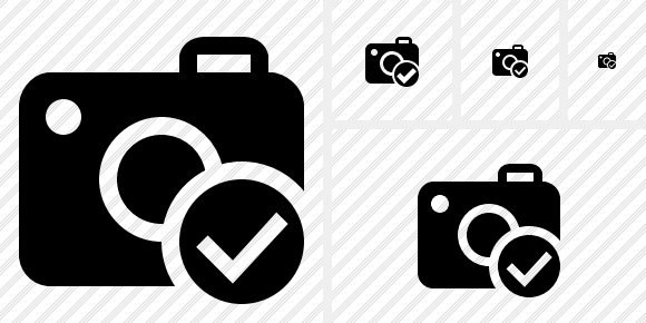 Photocamera Ok Icon