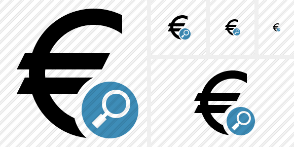 Euro Search Icon