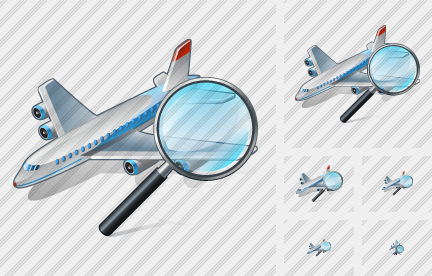 Airplane Search 2 Icon