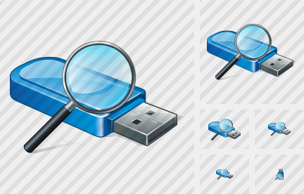 Icone Flash Drive Search2