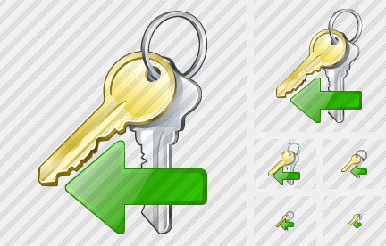 Keys Import Icon
