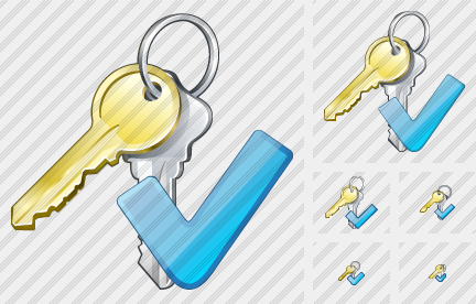 Keys Ok Icon