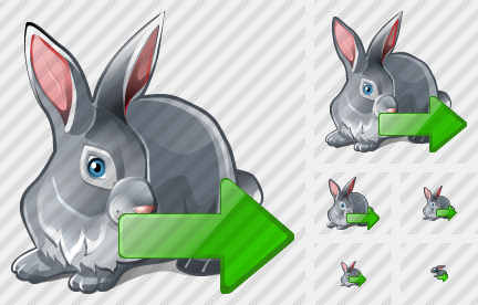 Icone Rabbit Export
