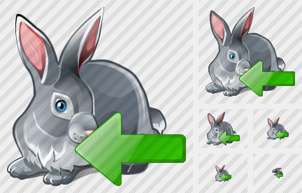 Icone Rabbit Import