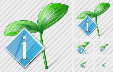 Sprouts Info Icon