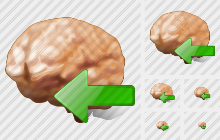 Brain Import Icon