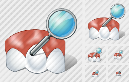 Normal Tooth Search Icon