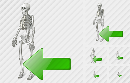 Icone Skeleton Import