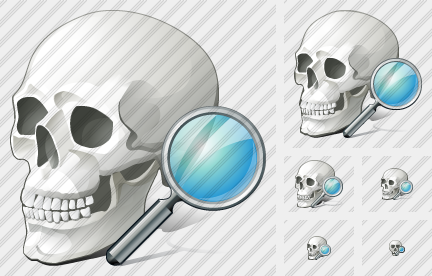 Icone Skull Search
