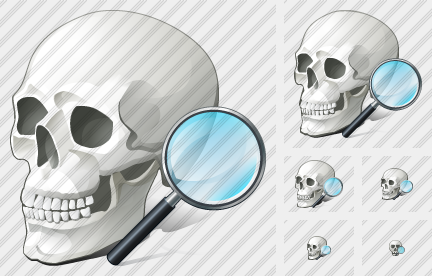 Icone Skull Search2